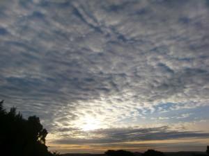 秋のないタンザニアで、ひつじ雲をパチリ!