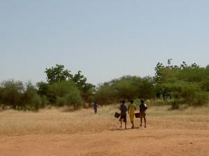 水やりをする生徒たち