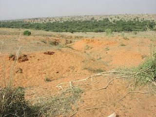 砂丘の浸食跡6.jpg