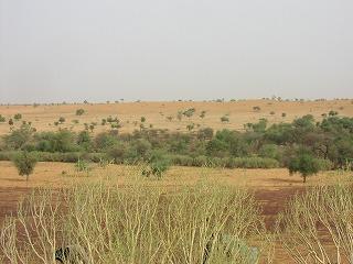 砂丘からの眺望.jpg