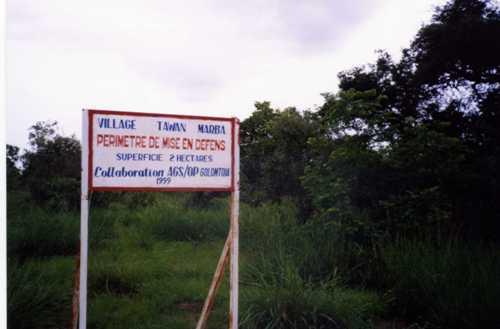 植生保護区2002-001.jpg
